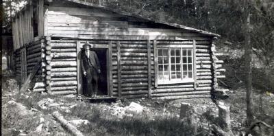 Timmerdrift i Perseskogen 1921